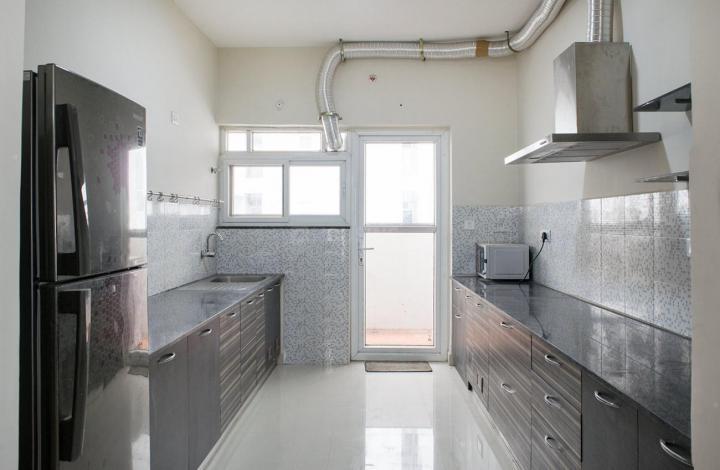Kitchen Image of PG 4643002 Mahadevapura in Mahadevapura