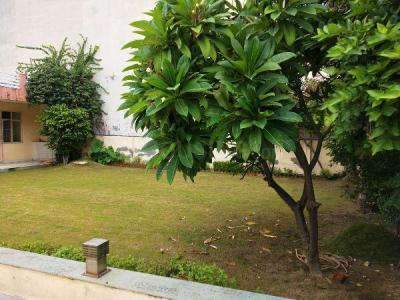 200 Sq.ft Residential Plot for Sale in Sector 105, Noida