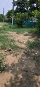 Gallery Cover Image of  Sq.ft Residential Plot for buy in Sector 39 for 16180500