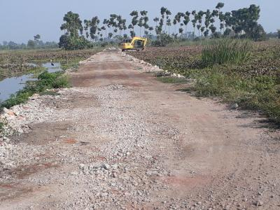 Gallery Cover Image of  Sq.ft Residential Plot for buy in Shyamnagar for 880000
