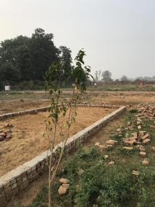 228 Sq.ft Residential Plot for Sale in Sector 70, Gurgaon