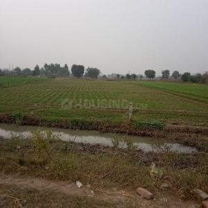 3250 Sq.ft Residential Plot for Sale in Malyana, Meerut