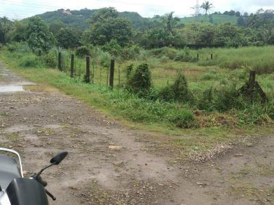 4000 Sq.ft Residential Plot for Sale in Mannuthy, Thrissur