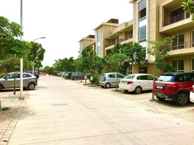 Gallery Cover Image of 1103 Sq.ft 3 BHK Apartment for buy in BPTP Parklands Pride, Sector 77 for 3800000