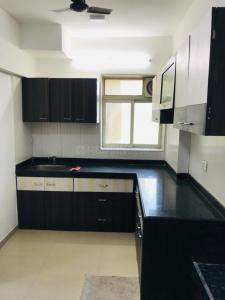 Gallery Cover Image of 980 Sq.ft 2 BHK Apartment for rent in Nahar Jonquille and Jamaica, Powai for 40000