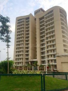Gallery Cover Image of 1260 Sq.ft 2 BHK Apartment for rent in BPTP Discovery Park, Sector 80 for 12000