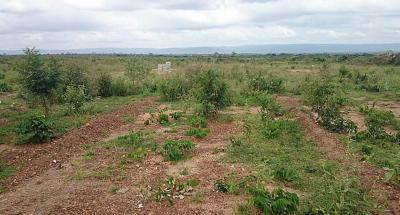 Gallery Cover Image of  Sq.ft Residential Plot for buy in DLF Phase 1 for 39581500