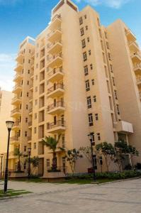 Gallery Cover Image of 1100 Sq.ft 3 BHK Apartment for rent in BPTP Park Elite Premium Villa, Sector 84 for 11500