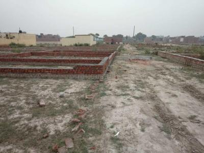 Gallery Cover Image of 315 Sq.ft Residential Plot for buy in Jaitpur for 437500