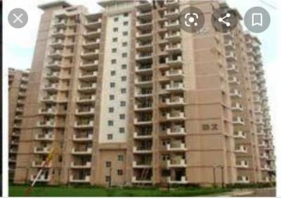 Gallery Cover Image of 445 Sq.ft 2 BHK Apartment for buy in Op Floridaa, Sector 82 for 2150000