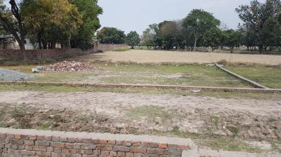 Gallery Cover Image of  Sq.ft Residential Plot for buy in Charbagh for 1200000