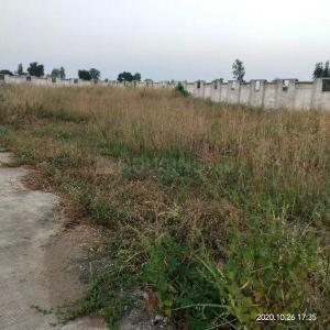 4000 Sq.ft Residential Plot for Sale in Sonagiri, Bhopal