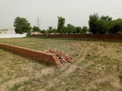 Gallery Cover Image of 900 Sq.ft Residential Plot for buy in Sector 81 for 2150000