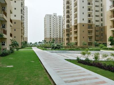 Gallery Cover Image of 1075 Sq.ft 2 BHK Apartment for rent in Paramount Emotions, Noida Extension for 10000