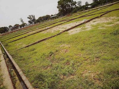 3000 Sq.ft Residential Plot for Sale in Nohsa, Patna