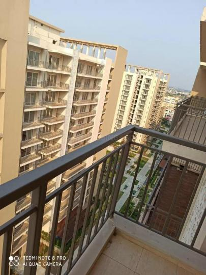 Living Room Image of 2335 Sq.ft 3 BHK Apartment for rent in Sector 81 for 35000
