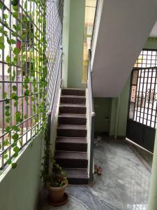 Gallery Cover Image of 400 Sq.ft 1 BHK Apartment for rent in Electronic City for 10000