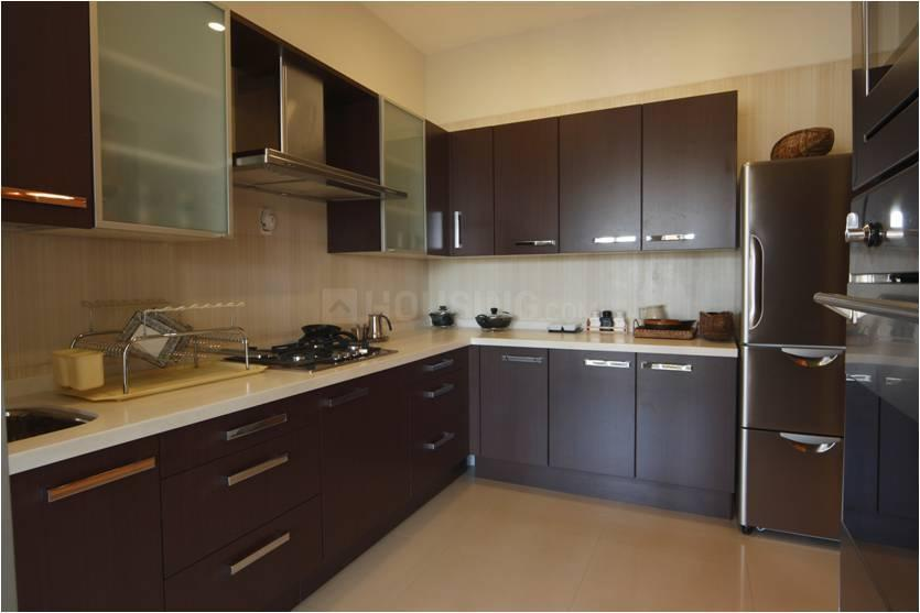 Kitchen Image of 545 Sq.ft 1 BHK Apartment for rent in Thane West for 13500