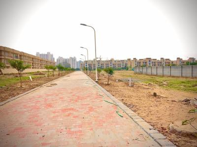 2250 Sq.ft Residential Plot for Sale in Sector 77, Faridabad
