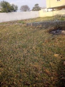 28000 Sq.ft Residential Plot for Sale in Suraram, Hyderabad