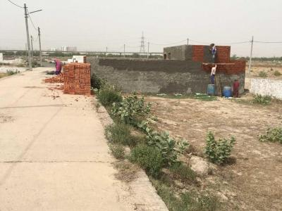 540 Sq.ft Residential Plot for Sale in Sector 141, Noida