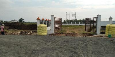 Gallery Cover Image of  Sq.ft Residential Plot for buy in Gotal Pajri for 2453875