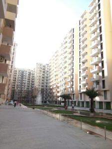 Gallery Cover Image of 1275 Sq.ft 3 BHK Apartment for rent in OXY Homez, Bhopura for 8500