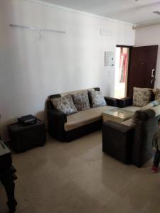 Gallery Cover Image of 1550 Sq.ft 3 BHK Apartment for rent in GOLF CITY, Sector 75 for 19000
