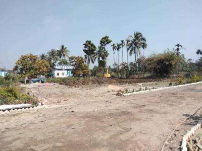 Gallery Cover Image of  Sq.ft Residential Plot for buy in Shyamnagar for 800000