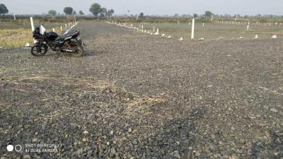 800 Sq.ft Residential Plot for Sale in Madan Mahal, Jabalpur