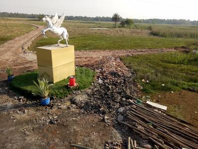 Gallery Cover Image of  Sq.ft Residential Plot for buy in Khariberia for 498001