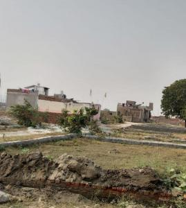 450 Sq.ft Residential Plot for Sale in Sector 146, Noida