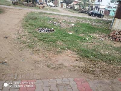 Gallery Cover Image of 4518 Sq.ft Residential Plot for buy in Ansal Sushant Lok 2, Sector 55 for 42500000