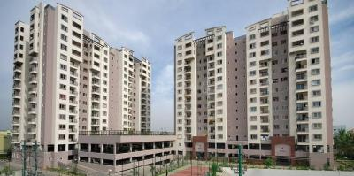 Gallery Cover Image of 1760 Sq.ft 3 BHK Apartment for buy in Salarpuria Sattva Serenity, HSR Layout for 15000000