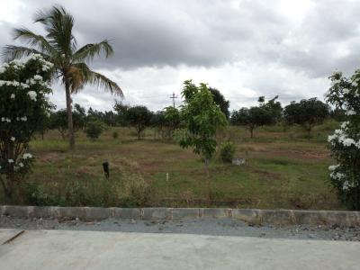 Gallery Cover Image of  Sq.ft Residential Plot for buy in Hulimavu for 7800000