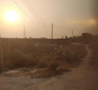 1980 Sq.ft Residential Plot for Sale in Baberpur Mandi, Panipat