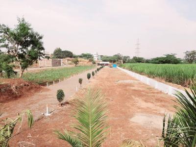 1000 Sq.ft Residential Plot for Sale in Kolhewadi, Pune