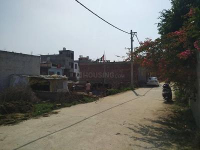 1000 Sq.ft Residential Plot for Sale in Sector 81, Noida