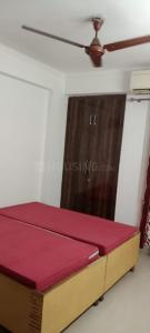 Gallery Cover Image of 890 Sq.ft 1 BHK Apartment for rent in Noida Extension for 11000