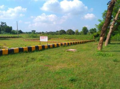 Gallery Cover Image of  Sq.ft Residential Plot for buy in Aliganj for 4500000