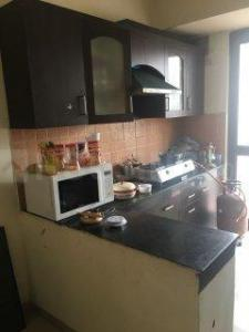 Gallery Cover Image of 1100 Sq.ft 2 BHK Apartment for rent in Zeta II Greater Noida for 9000