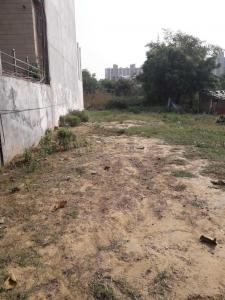 161 Sq.ft Residential Plot for Sale in Sector 47, Gurgaon