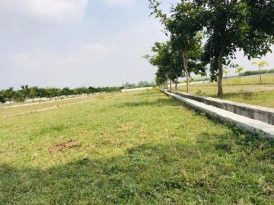 Gallery Cover Image of  Sq.ft Residential Plot for buy in Oragadam for 780000