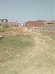 900 Sq.ft Residential Plot for Sale in Sector 115, Noida