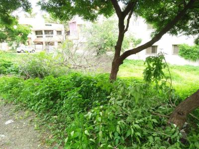 Gallery Cover Image of  Sq.ft Residential Plot for buy in Wagholi for 5628800