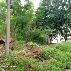 1000 Sq.ft Residential Plot for Sale in Jubilee Hills, Hyderabad
