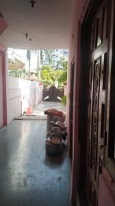 Gallery Cover Image of 5500 Sq.ft 9 BHK Independent House for buy in Tin Puliya for 20000000
