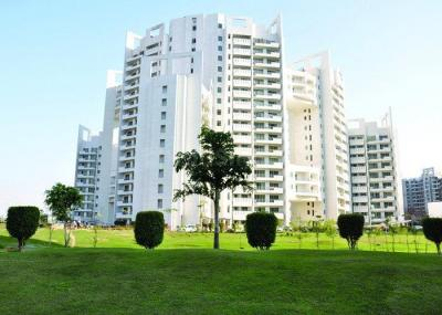 Gallery Cover Image of 3390 Sq.ft 4 BHK Apartment for buy in Sector 53 for 37500000