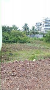 Gallery Cover Image of  Sq.ft Residential Plot for buy in Kadamwadi for 10800000