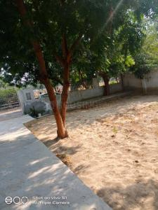 Gallery Cover Image of 830 Sq.ft 2 BHK Independent House for buy in Omega II- Tower 4, Omega II Greater Noida for 8100000